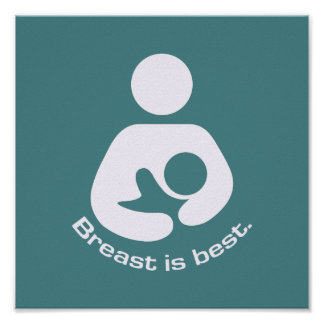 Le sein est la meilleure icône - Teal Poster
