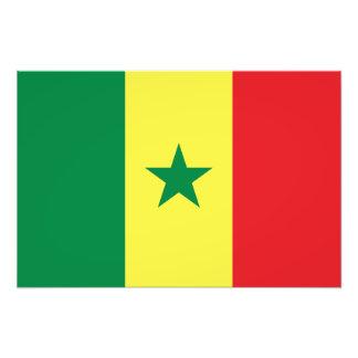 Le Sénégal - drapeau sénégalais Photos D'art
