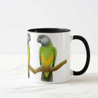 Le Sénégal Parrots la tasse