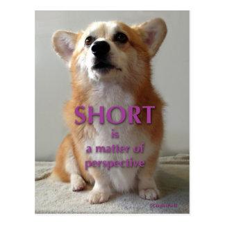 Le short est une question de carte mignonne de carte postale