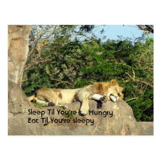 Le sommeil jusqu à ce que vous ayez faim mangent cartes postales