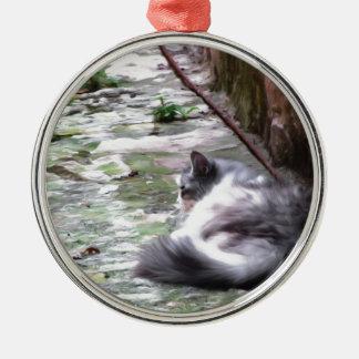 Le sommeil pelucheux de chat se tapissent sur le ornement rond argenté