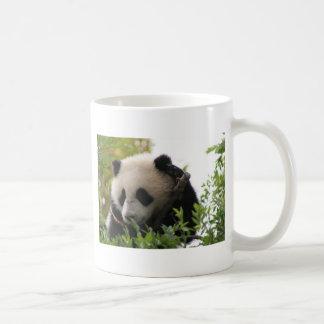 Le Su Lin, petit animal d'ours panda géant au zoo Mug Blanc