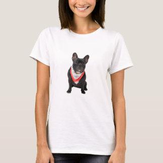 Le T-shirt des belles femmes mignonnes de photo de