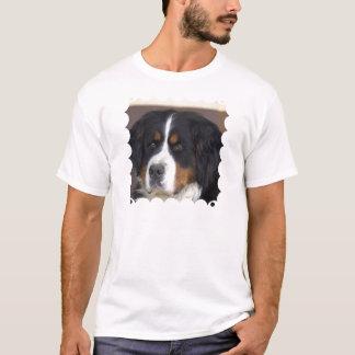 Le T-shirt des hommes de Berner Sennenhund