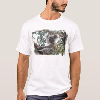 Le T-shirt des hommes de koala