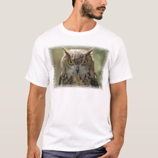 Le T-shirt des hommes de photo de hibou