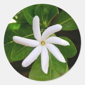 Le Tahiti Tiare Sticker Rond