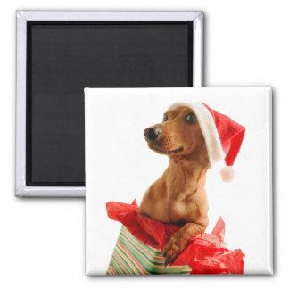Le teckel père Noël - le chien de père Noël - Aimant