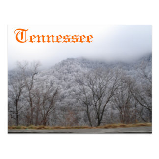 Le Tennessee Cartes Postales