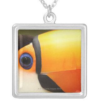 Le toucan de Toco (toco de Ramphastos) est le plus Pendentif Carré
