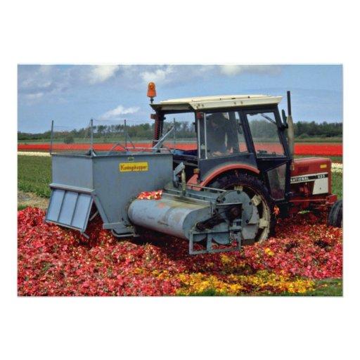 Le tracteur dans l'ampoule met en place, les fleur faire-parts