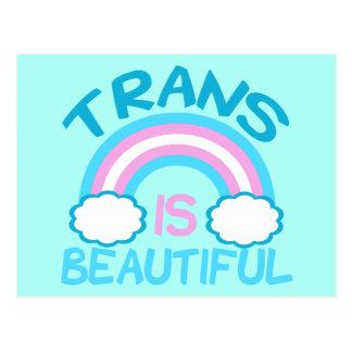 Le transsexuel est beau cartes postales