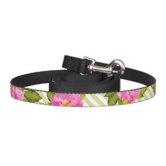 Le vert tropical de fleur barre la laisse de chien