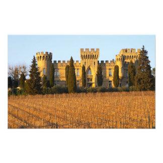 Le vignoble avec les vignes de syrah et le château photo
