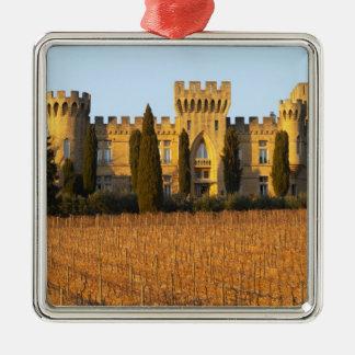 Le vignoble avec les vignes de syrah et le château ornement carré argenté