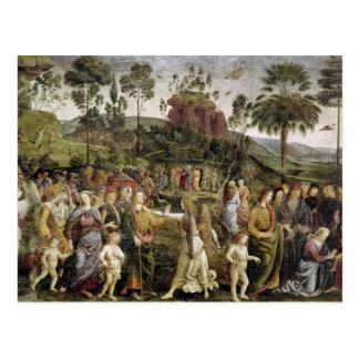 Le voyage de Moïse, c.1481-83 Cartes Postales