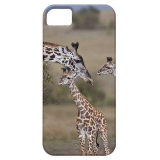 Le wie de girafe de Maasai (girafe Tippelskirchi) iPhone 5 Case
