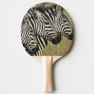 Le zèbre de Burchelli, burchellii d'Equus, masai Raquette De Ping Pong