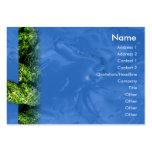L'eau et herbe - potelées modèles de cartes de visite