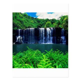L'eau isolée tombe Kauai Carte Postale