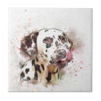 Lèchement de chien de Dalmation Petit Carreau Carré