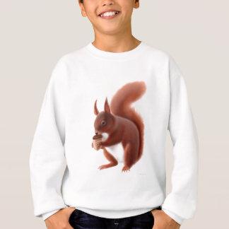 L'écureuil rouge badine le sweatshirt