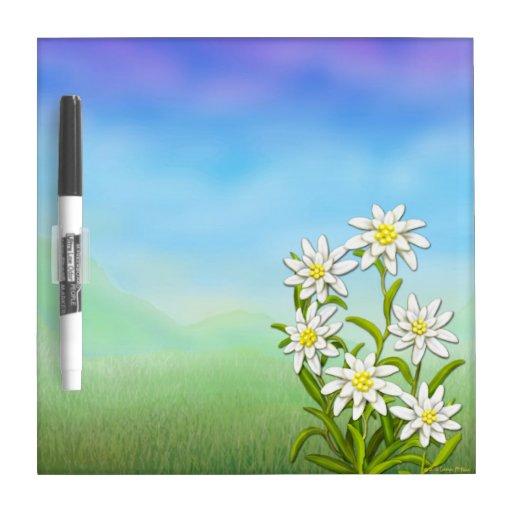 L'edelweiss suisse fleurit le conseil sec d'efface tableaux effaçables blancs