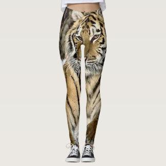 Leggings Amant de tigre sibérien de faune