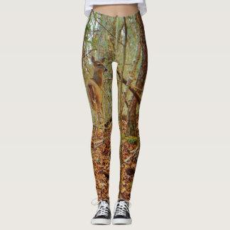 Leggings Cerfs communs dans le bois. Pantalon de bout droit