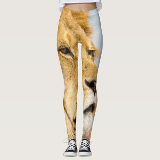 Leggings Grand lion regardant loin