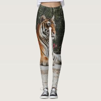 Leggings Guêtres exotiques de tigre