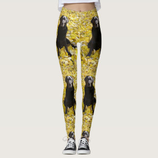 Leggings Laboratoire noir en parc
