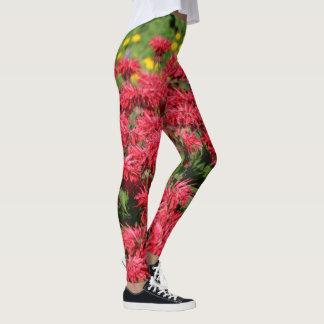 Leggings Marguerites rouges de Gloriosa de baume d'abeille