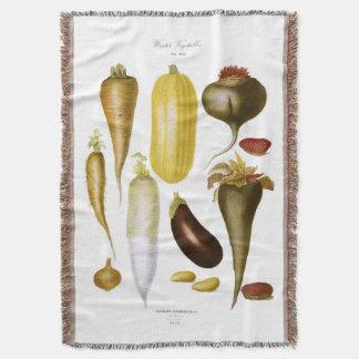 Légumes d'hiver couverture
