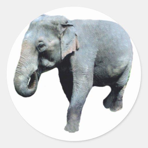 L'éléphant 1p de l'Indochine redressent Autocollants Ronds