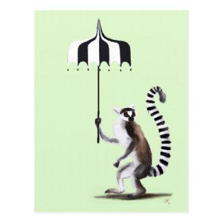Lémur coupé la queue par anneau cartes postales