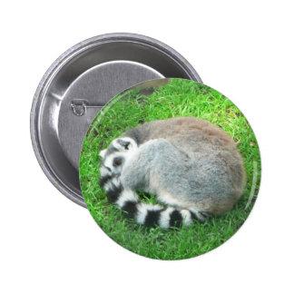 Lémur de sommeil sur l'herbe pin's