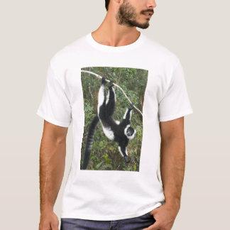 Lémur noir et blanc de Ruffed, (Varecia T-shirt