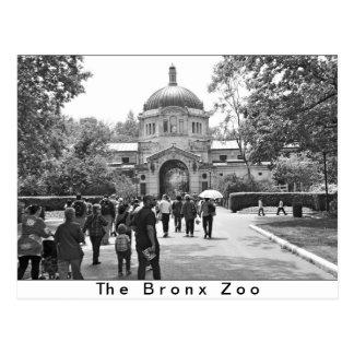 L'entrée de zoo de Bronx Carte Postale