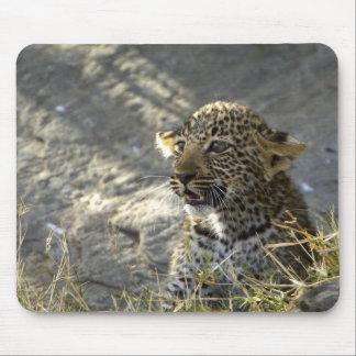 Léopard bébé tapis de souris