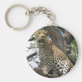 Léopard dans le porte - clé d'arbre porte-clé