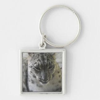 Léopard de neige mignon porte-clé carré argenté