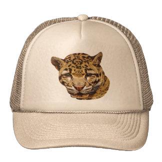 Léopard opacifié casquettes