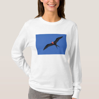 L'Equateur, Galapagos. Tour d'île de Genovesa aka, T-shirt