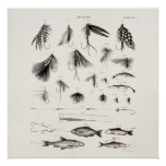 Les 1800s vintages pêchant la pêche de mouche pilo affiches