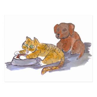 Les aliments pour chiens, Yum, indiquent le chaton Cartes Postales
