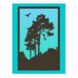 Les arbres cartes postales