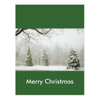 Les arbres de l'hiver carte postale