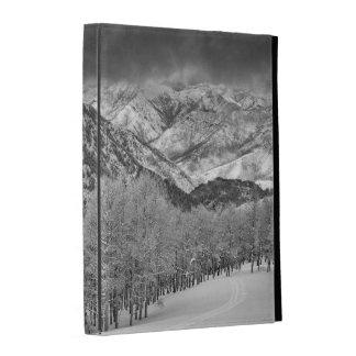Les arbres de plantes vertes et d'Aspen dans une Coques iPad Folio